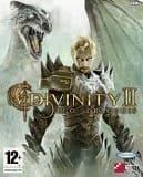 Divinity II обзор