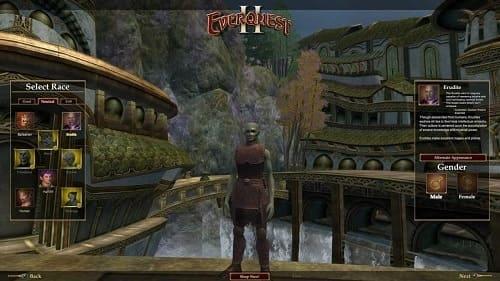 Обзор игры EverQuest II