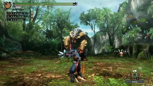 Обзор игры Monster Hunter 3 Ultimate