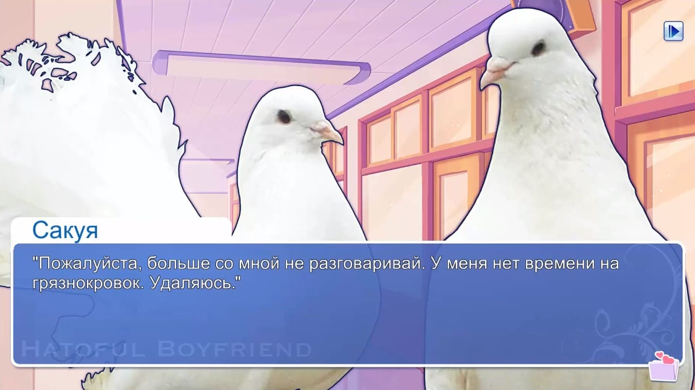 Обзор игры Hatoful Boyfriend