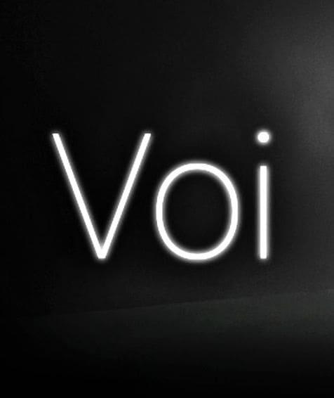 Обзор игры VOI
