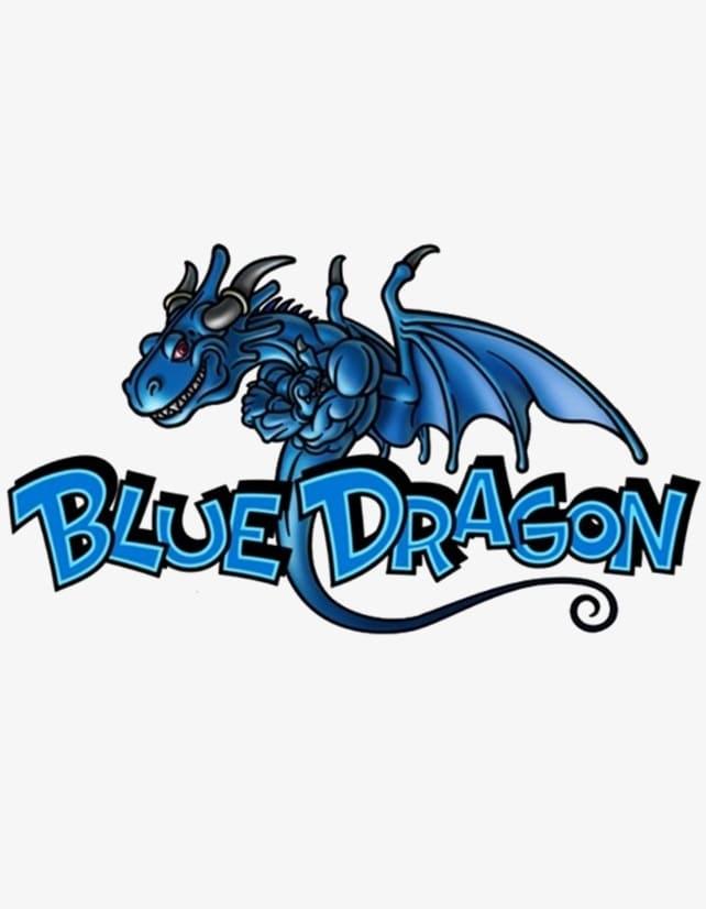 Обзор игры Blue Dragon
