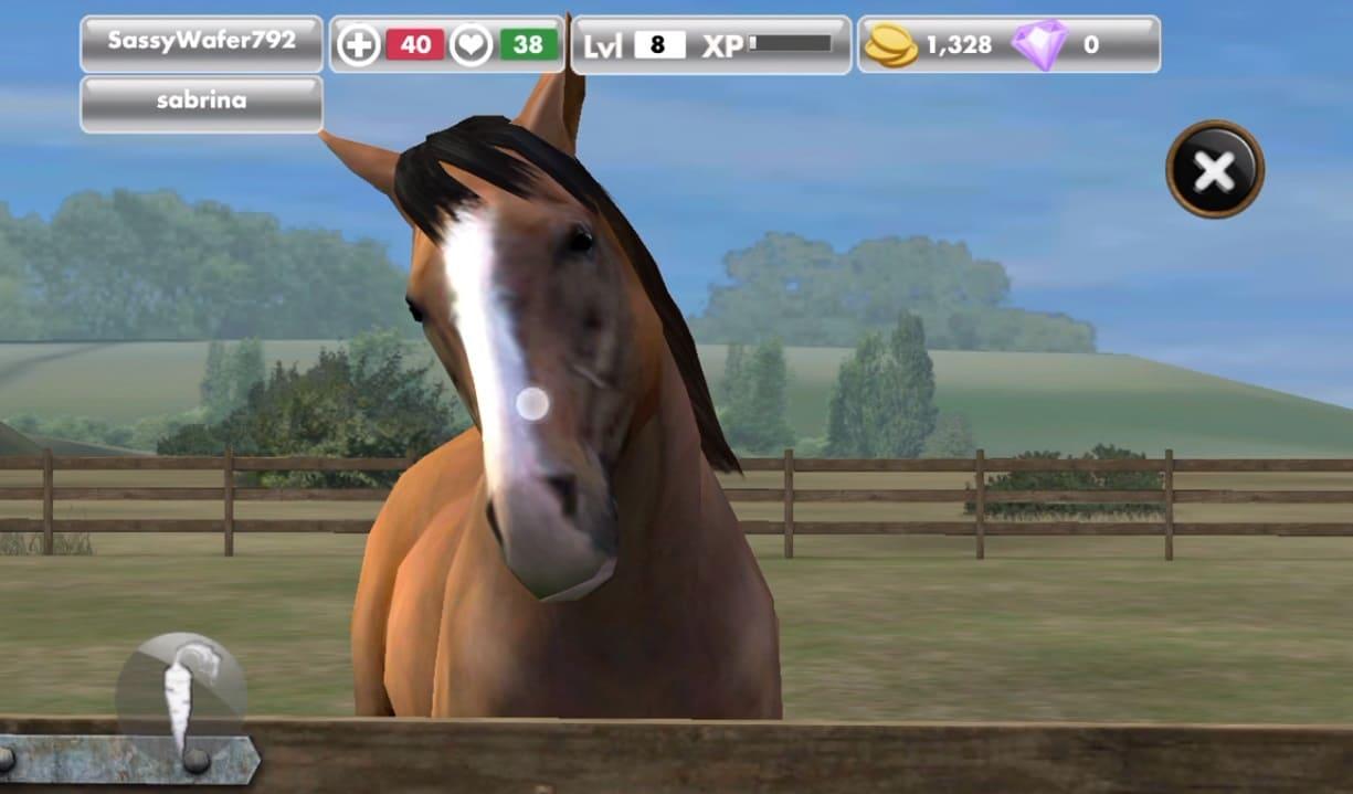 Обзор игры My Horse