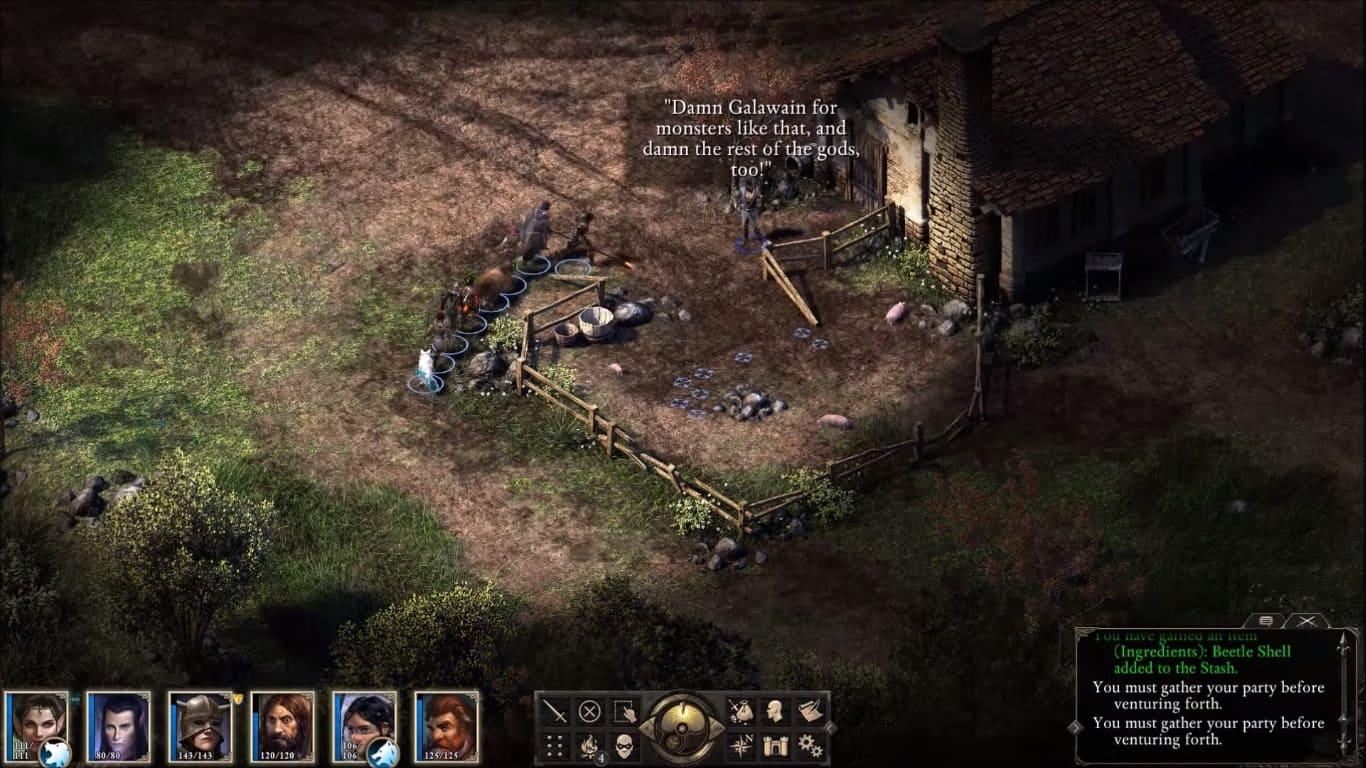 Обзор игры Pillars of Eternity